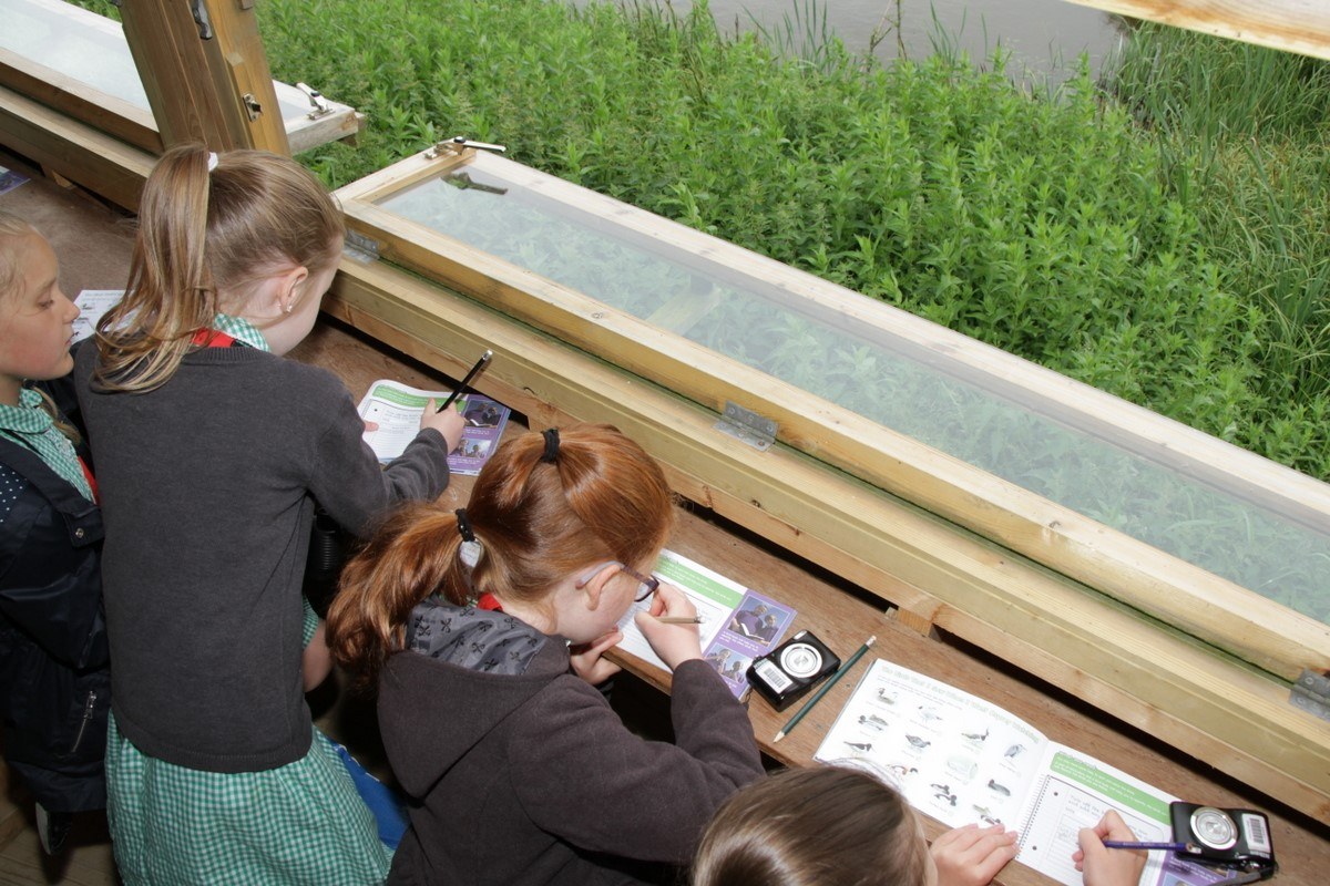Eager youngsters fill in their bird lists