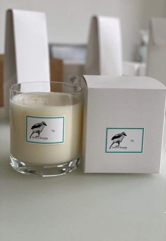 Fig Three wick candle
